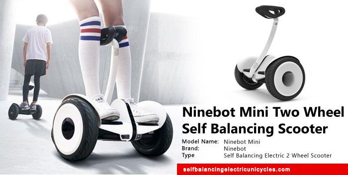 Ninebot Mini Two Wheel Self Balancing Electric Scooter
